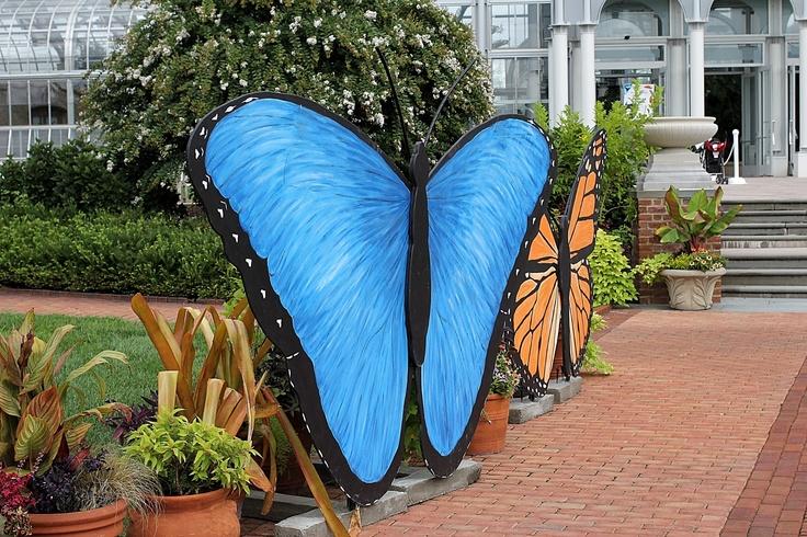 Lewis Ginter Botanical Garden Butterflies Lewis Ginter Botanical Garden Pinterest