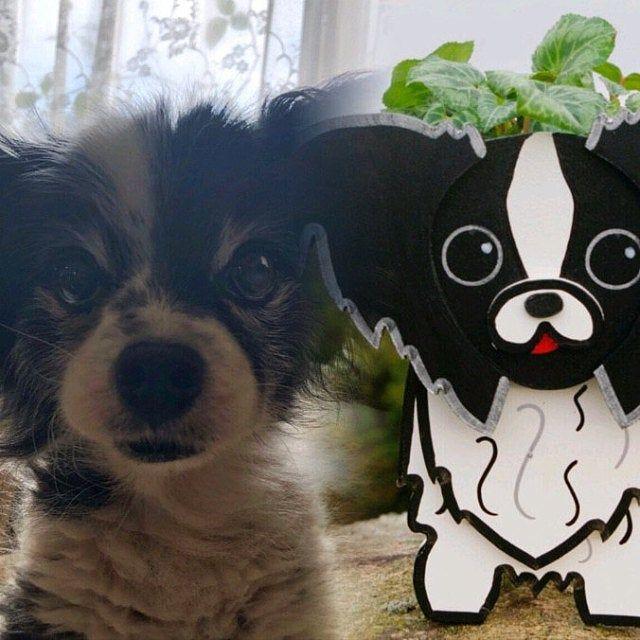 Dachshund Plant Pot Holder Garden Ornaments Decorations Dog Dogs