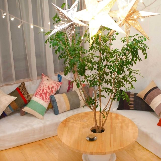 「観葉植物」 「クッション」 「星モチーフ」 「コーヒーテーブル」 「植物のある部屋」...etcのインテリア実例写真 Katsuraさんのお部屋 at 2013-06-09 14:20:39   RoomClip(ルームクリップ)