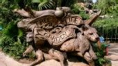 """Discovery Island Trails in Animal Kingdom _ See the """"Tree of Life"""" up close."""