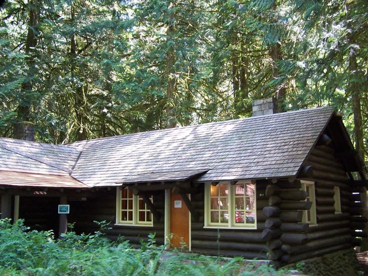 Dark Stain Log Cabin In The Woods Pinterest Dark