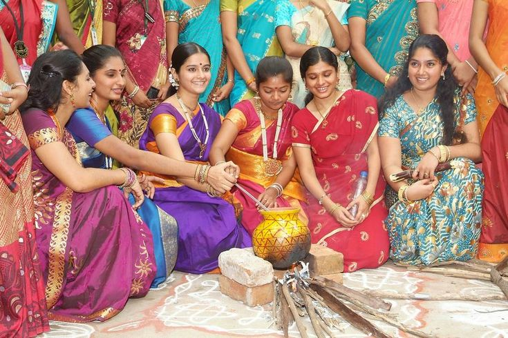 Pongal celebrations - Google Search