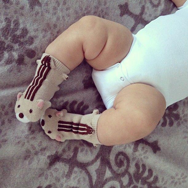 chipmunk socks: Chipmunks Socks, Babies, Chubby Baby, Baby Feet, Baby Boys, Baby Socks, Cute Socks, Kids, Baby Chipmunks