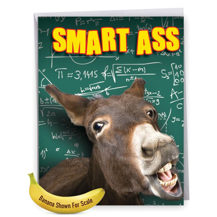Inside: Congratulations To The Smart-Ass-T Dude We Know! ---- Smart Ass Picture Graduation Greeting Card Nobleworks Jumbo Smart Donkey Card.  Read more: http://www.nobleworkscards.com/j3715gdg-smart-ass-hilarious-graduation-greeting-card-nobleworks.html#ixzz4gbr81cgu