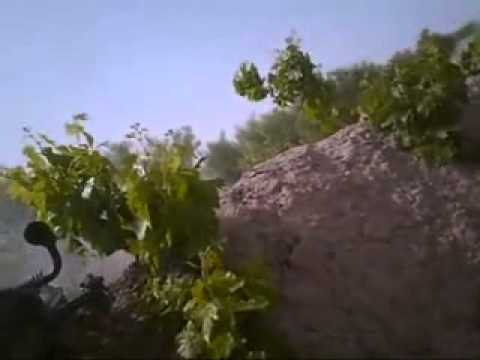 """▶ """"Seriously close combat footage as Canadian PPCLI fight back Taliban forces. - YouTube"""""""