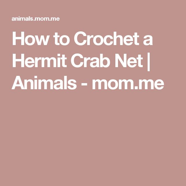 How to Crochet a Hermit Crab Net | Animals - mom.me