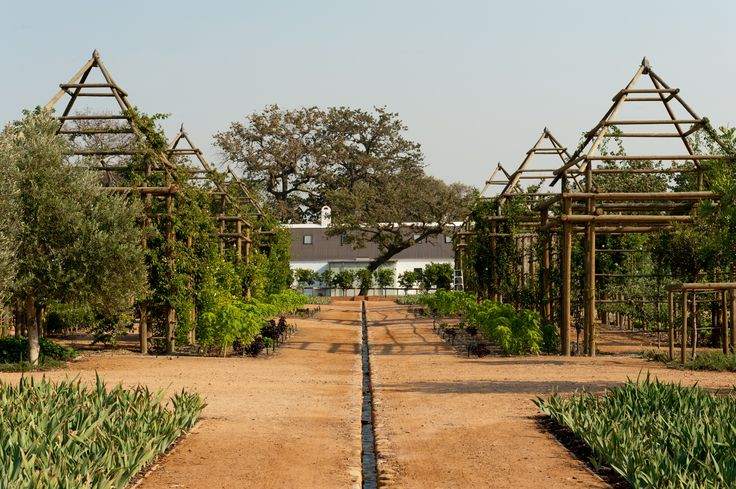 Water from the Berg River flows directly through the gardens at #Babylonstoren. #GourmetAfrica #foodie