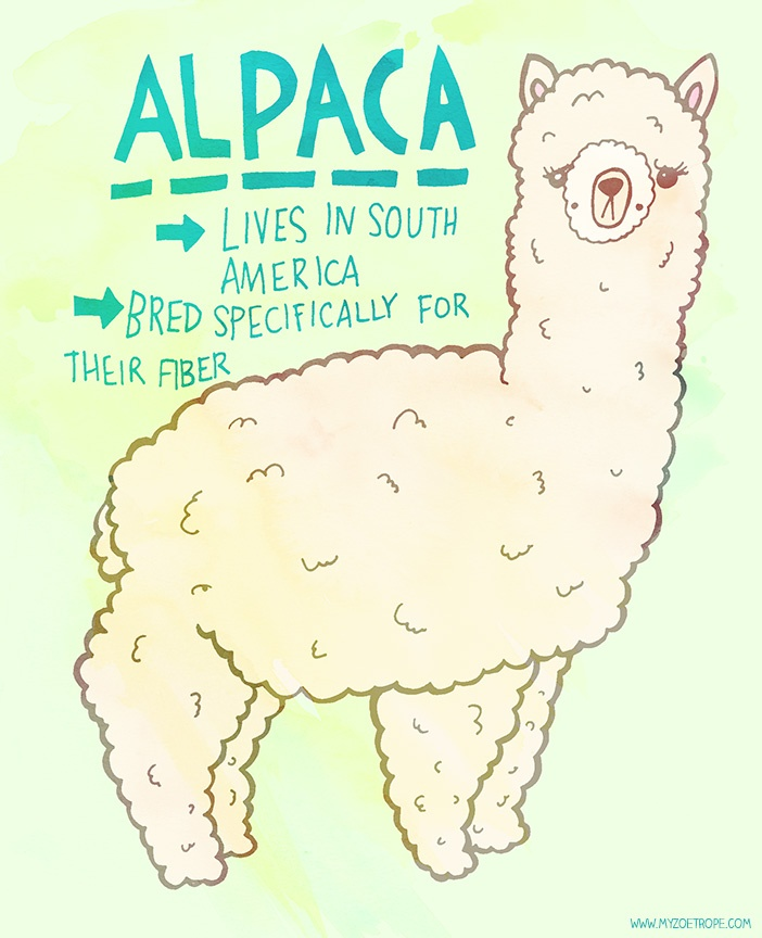 365 Days of Animals by My Zoetrope  007: Alpaca  Pen/Ink/Digital