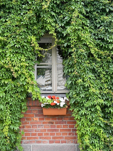 Hidden in Helsinki