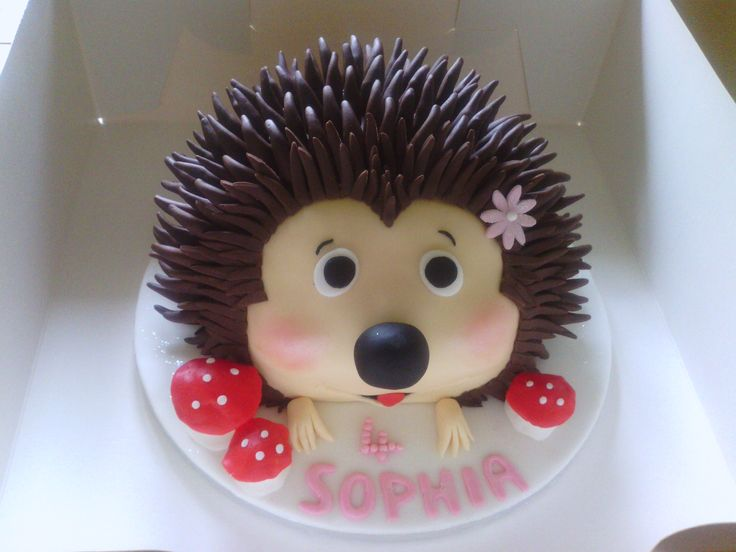 Hedgehog Birthday Cake - Chocolate cake covered in ganache and chocolate fondant made for our daughter/grandaughter's birthday.