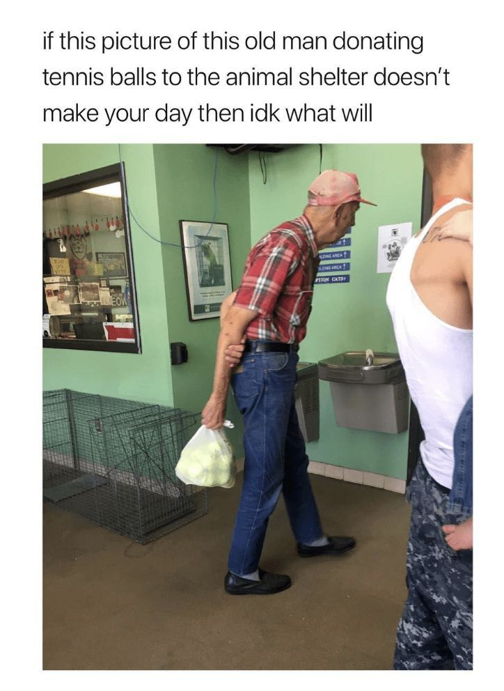 100 Today's Most Funny Memes (#222)