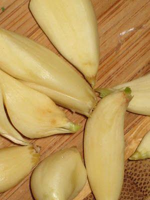 Jak usušit česnek
