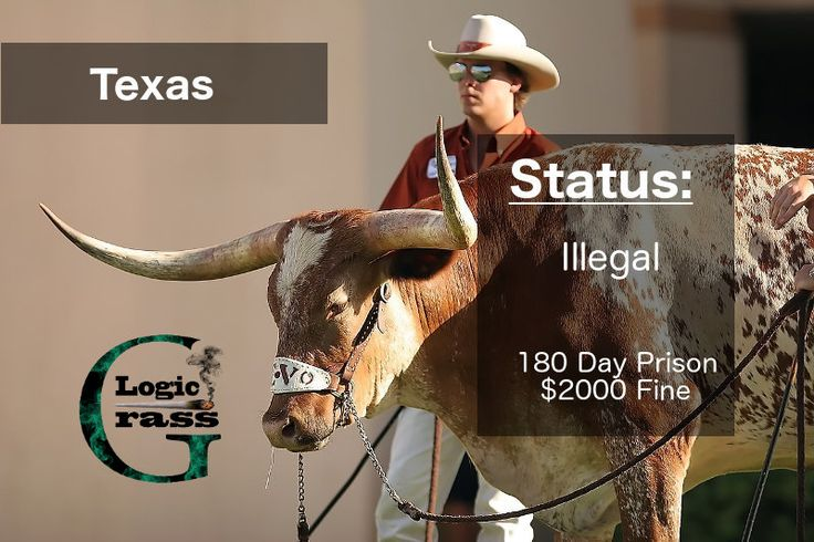 Check out the legal status of marijuana in Texas #marijuanalegalization #cannabiscommunity