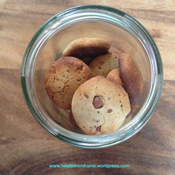 Dinosaur Cookies   gluten free, dairy free, nut free, fructose friendly, low fodmap. sugar free, lactose free, clean eating