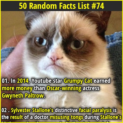 1. In 2014, Youtube star Grumpy Cat earned more money than Oscar-winning actress Gwyneth Paltrow. 2. 20 sided dice were used in the ancient world. Examples of the dice have been found from Ancient Greece, Rome, and even Egypt.
