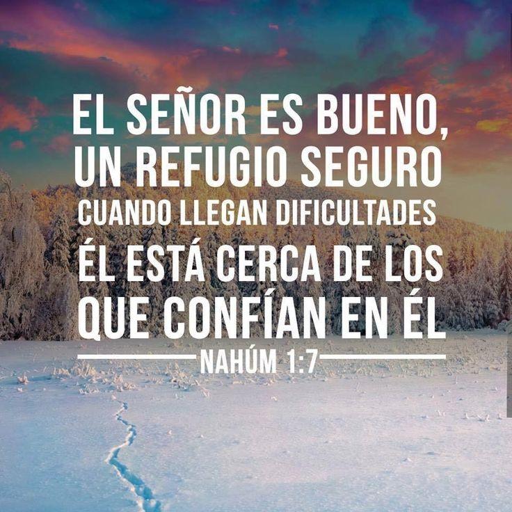 << El Señor es bueno, un refugio seguro cuando llegan dificultades El está cerca de los que confían en El >>. Nahúm 1:7