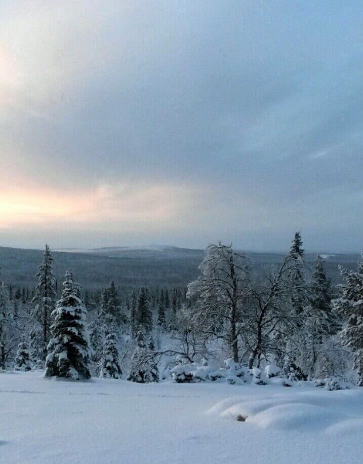 Pallas, Finnish Lapland