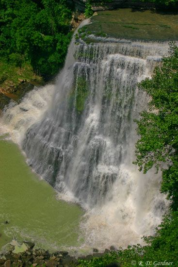 If you've never been to Burgess Falls in Middle Tennessee, you really need to check it out! Walk the trail and see different levels of water falls! It's about a 1 mile hike.
