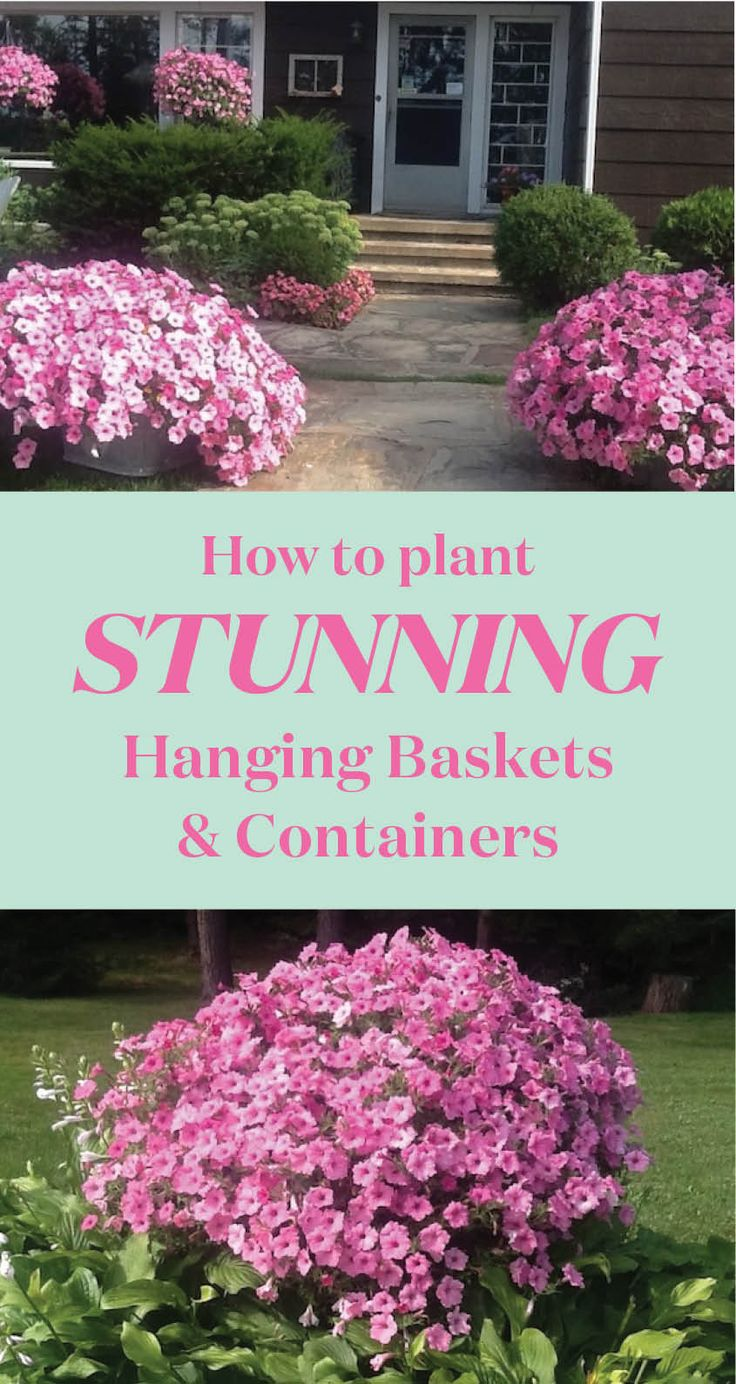 Making your own hanging baskets and containers takes a little extra effort but the results are definitely worth it.