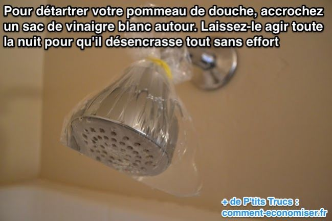 Votre pommeau de douche est plein de calcaire ?   Découvrez l'astuce ici : http://www.comment-economiser.fr/enlever-calcaire-pommeau-douche.html?utm_content=bufferb6679&utm_medium=social&utm_source=pinterest.com&utm_campaign=buffer