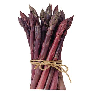 Purple Passion Asparagus - Seeds of Change