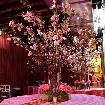 Cherry blossoms - what a nice idea! Feels like celebrating in the garden.