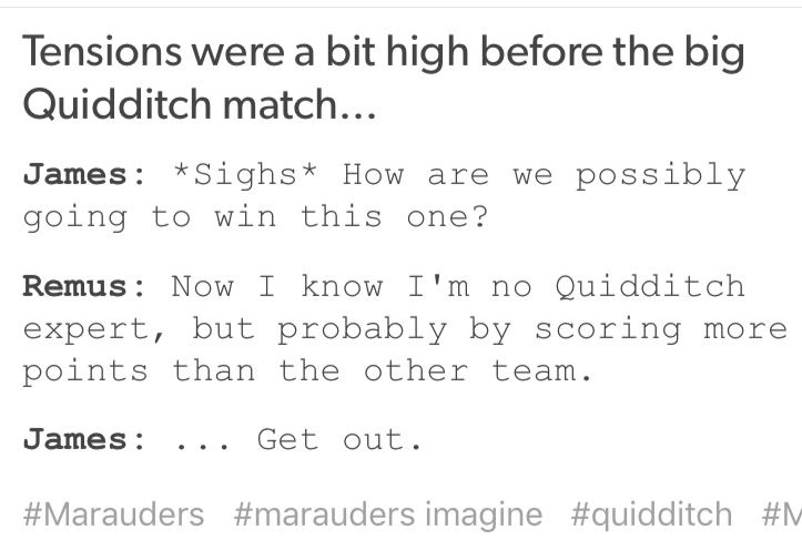 How will we win this Quidditch match? James and Remus.