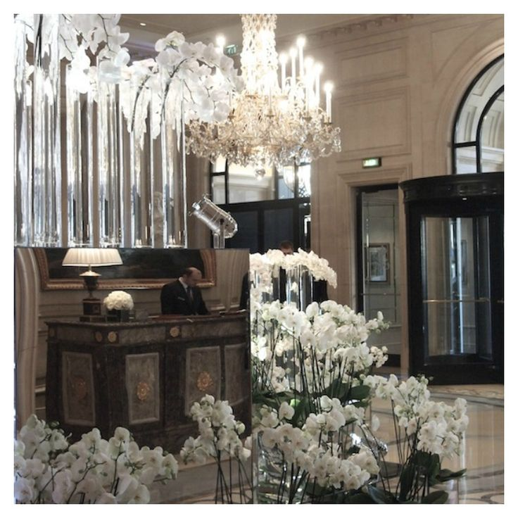 The 'cream' of Paris… | Hotel Georges V lobby filled w/White Phalaenopsis Orchids | Lovely Mr. Jeff Leatham