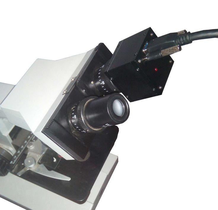 5MP Digital Eyepiece Mikroskop USB3.0