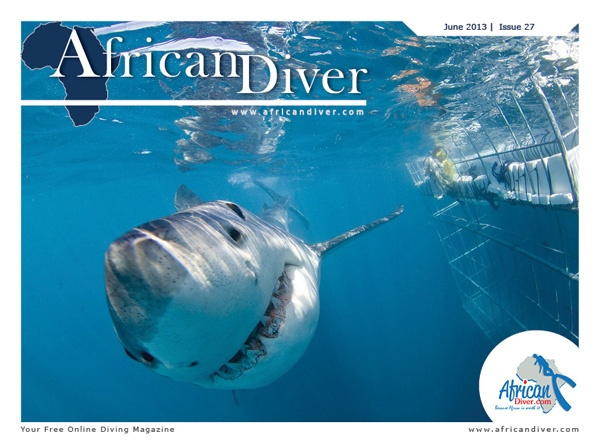 Issue 27: Download for free. http://africandiver.com/index.php/magazine/download-issues