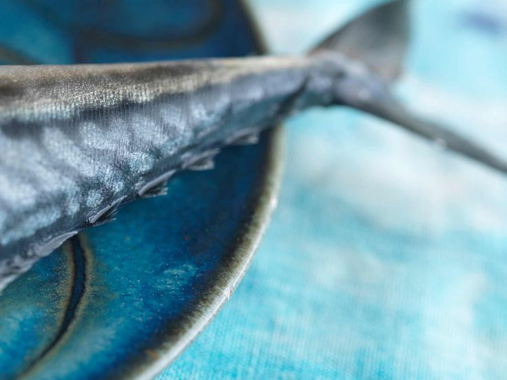Blue Water Cafe + Raw Bar | Vancouver Seafood Restaurant
