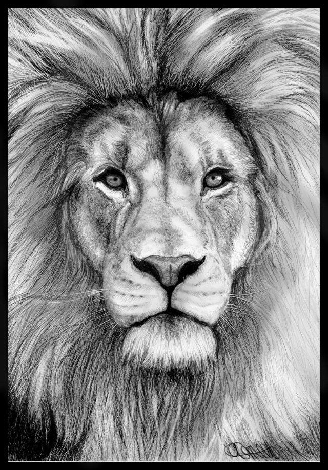 PLASTICITEIT; doordat er met potlood schaduw en licht is aangebracht in de kop van de leeuw.
