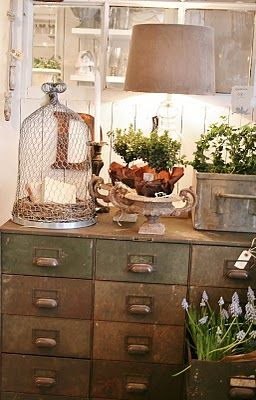 Wire cloche ... Love the chest and vignette