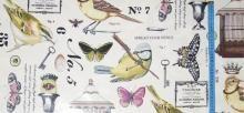 Ptaki i motyle-kupon-bawełna laminowana