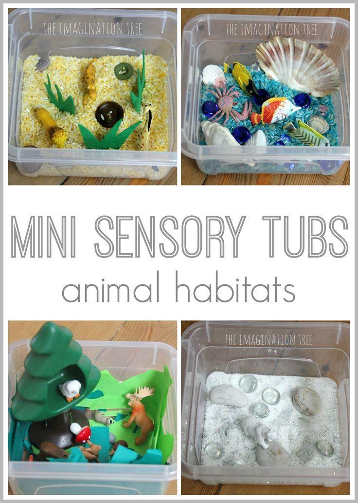 Mini sensory tubs- small world animal habitats. These make great DIY gifts!