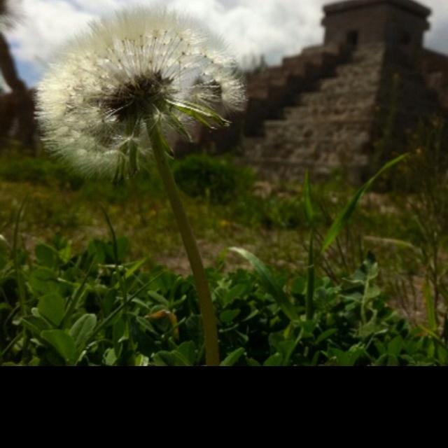 #Juárez, un lugar mágico!