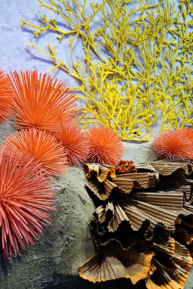 like the idea of theme windows for our pinup mannequins, ex: giant pencil shavings & such for september, a seascape in the summer with oversized anemones & coral...