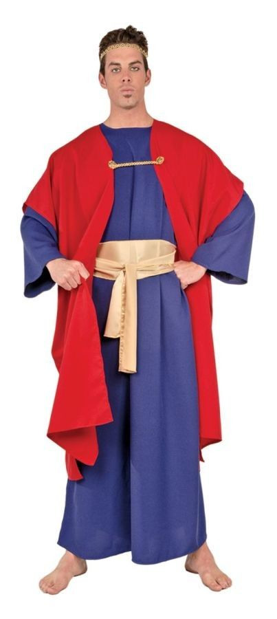 25 best religious costumes images on pinterest costume ideas wiseman i adult costume xl perfect costume for your church or school full length solutioingenieria Gallery