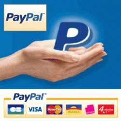 PayPal Purchase Link