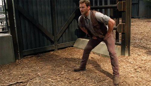 Chris Pratt approuve: | Mieux que Jurassic World, les zoologues qui imitent Chris Pratt
