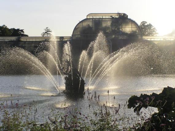 Veľká Británia - Kew-Kráľovská botanická záhrada 9