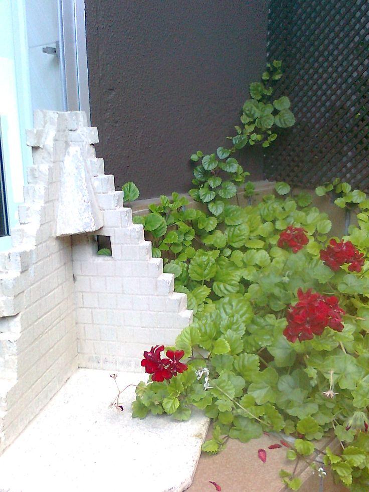Flores Mariñeiras