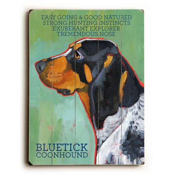 how to train a bluetick coonhound