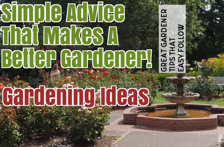 Helpful Advice And Tips On Organic Gardening – Gardening For Beginners