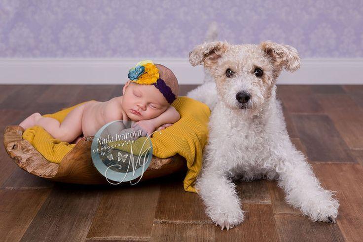 photographie 1365 - 28 01 2015 alasne 14 - Bébé de 15 à 30 jours - par la photographe Nada Ivanova