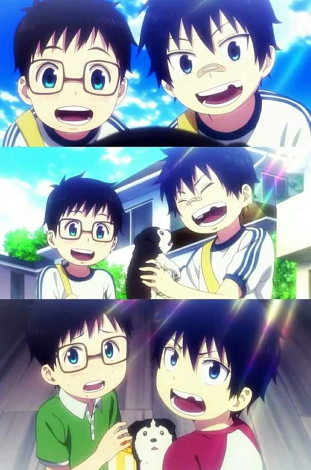 Blue Exorcist || Rin And Yukio #anime