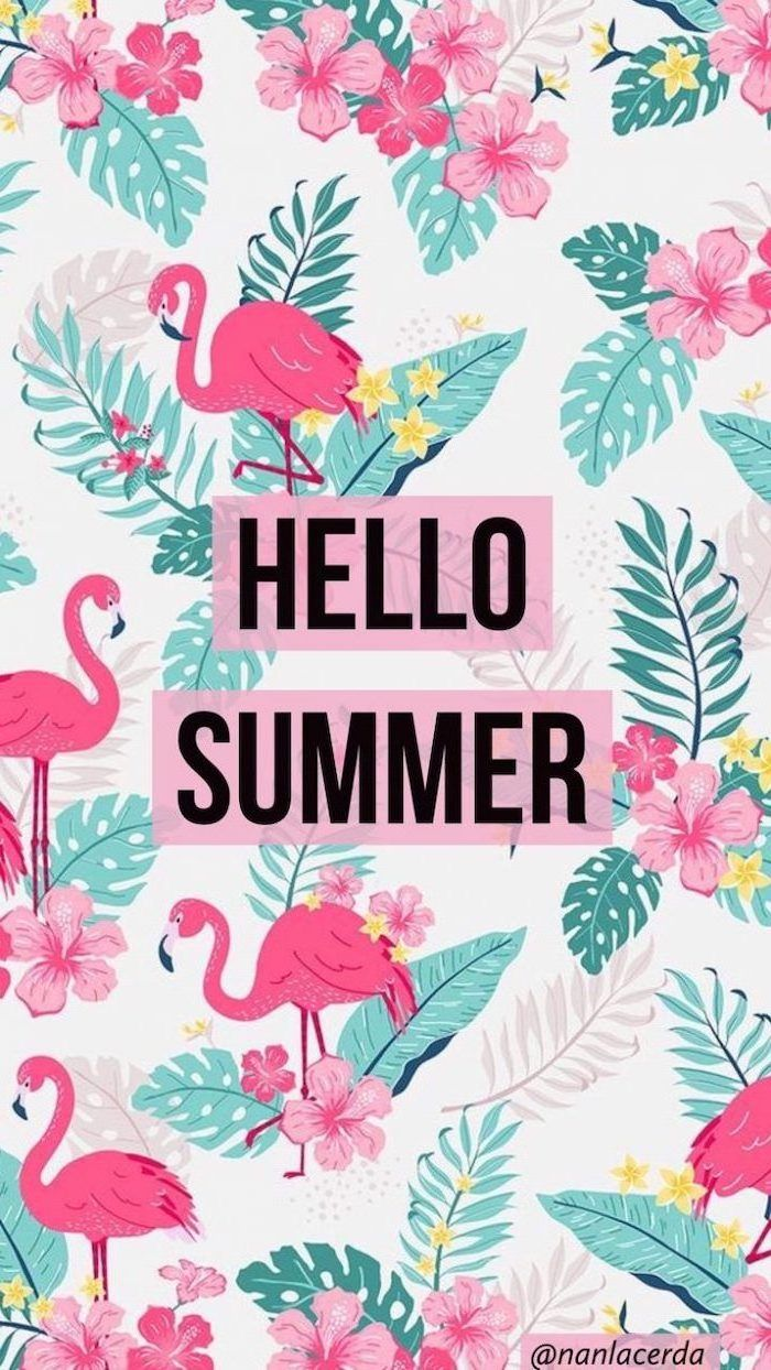 Hellow Summer Pink Flamingos Floral Cute Quote Wallpers Palm Leaves Drawing In 2020 Cute Summer Wallpapers Wallpaper Iphone Cute Download Cute Wallpapers