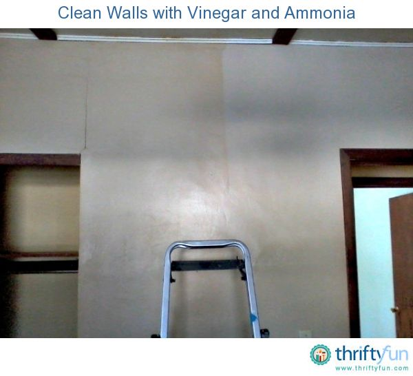 Cleaning Nicotine Off Walls | The o'jays, The wall and Sodas