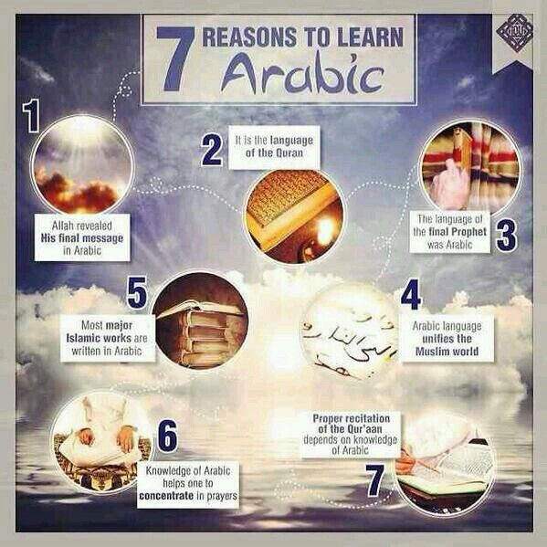 Top 14 Reasons Why It Is Important To Learn Arabic