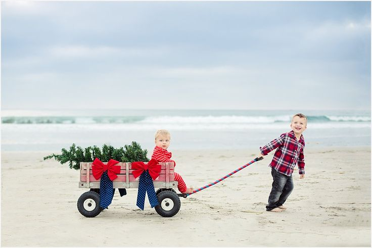 Christmas Tree in Wagon | San Diego Family Photography